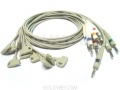 TRIM II 10 Lead EKG Cable XH001